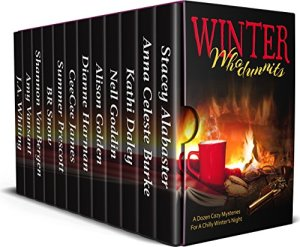 Winter box set cover